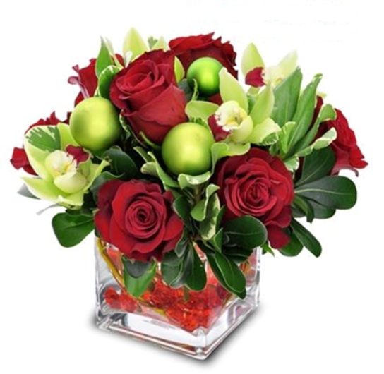 Blumz gallery of floral designs Christmas orchid arrangements